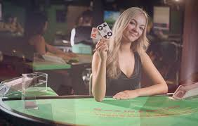 Betting Gurus Online Casinos Overview